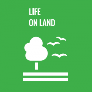 Life On Land Logo